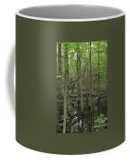 Wetlands Coffee Mug