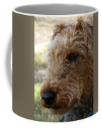 Welsh Lancelet Coffee Mug