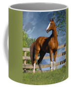 Welt Adel Coffee Mug