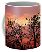 Wente Road Sunset Coffee Mug