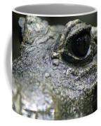 West African Dwarf Crocodile - Captive 04 Coffee Mug