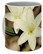 West Australian Wildflowers - Orchid 2 Coffee Mug
