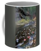 West Fork Oak Creek And Fall Color Coffee Mug by Rich Reid
