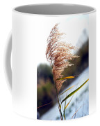 West Wind Today Coffee Mug