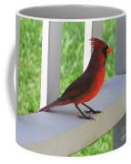 Western Cardinal Coffee Mug