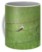 Western Kingbird Coffee Mug