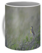 Western Meadowlark Morning Coffee Mug