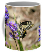 Western Tiger Swallowtail Coffee Mug