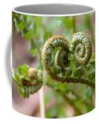 Western Swordfern Four Coffee Mug