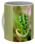 Western Swordfern Three Coffee Mug