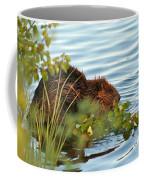 Wet Beaver Coffee Mug