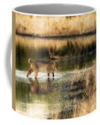 Wet Bob Cat  Coffee Mug
