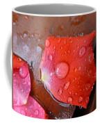 Wet Petal 1 Coffee Mug