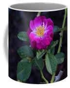 Wet Rose 2 Coffee Mug