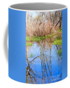 Wetlands Viewing Area In Chatfield State Park Coffee Mug