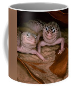 We've Got A Secret - Smiling Leopard Geckos Coffee Mug