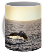 Whale Fluke Coffee Mug
