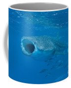Whale Shark, Ari And Male Atoll Coffee Mug by Mathieu Meur