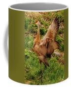 What A Show Off Coffee Mug