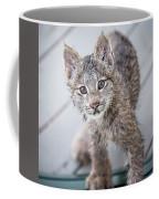 What Are You Coffee Mug by Tim Newton