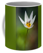 What Came To Mind Coffee Mug