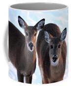 What Do You Say Coffee Mug