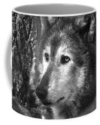 What Is A Wolf Thinking Coffee Mug
