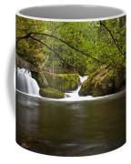 Whatcom Creek Gorge Coffee Mug