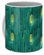 Wheat Leaf Stomata, Sem Coffee Mug