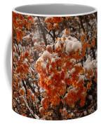 When Fall Meets Winter Coffee Mug