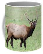 When I'm Calling You... Coffee Mug
