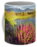 When The Rains Come In The Desert So Do The Blooms Coffee Mug