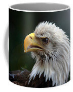 Where Eagles Dare 3 Coffee Mug