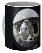 Where Is Eyore Coffee Mug
