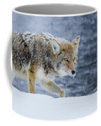 Where The Coyote Walks Coffee Mug
