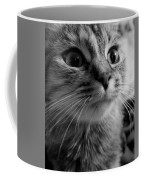 Whered Ya Get Those Peepers Coffee Mug