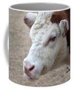 White And Brown Heifer Dairy Cow Coffee Mug