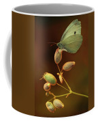 White And Green Butterfly On Dried Flowers Coffee Mug