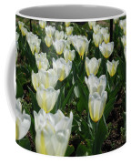 White And Pale Yellow Tulips In A Bulb Garden Coffee Mug