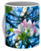 White And Pink Apple Blossoms Against A Blue Sky Coffee Mug