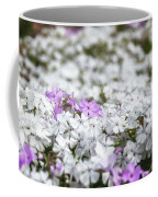 White And Pink Flowers At Botanic Garden In Blue Mountains Coffee Mug
