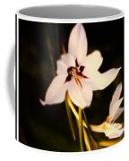 White And Purple Lily Coffee Mug