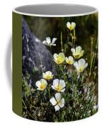 White And Yellow Poppies 1 Coffee Mug