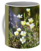 White And Yellow Poppies Abstract 2   Coffee Mug