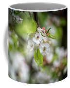 White Apple Flowers Coffee Mug