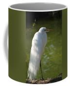 White Beauty Of The Marsh Coffee Mug