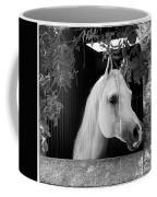 White Beauty - Series #5 Coffee Mug