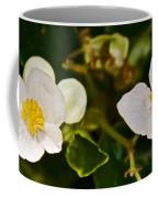 White Begonias At Pilgrim Place In Claremont-california Coffee Mug