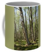 White Birch Forest Coffee Mug