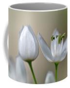 White Blossom 1 Coffee Mug